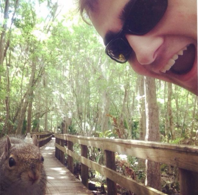 This Guy Gets Owned By A Squirrel (2 pics)