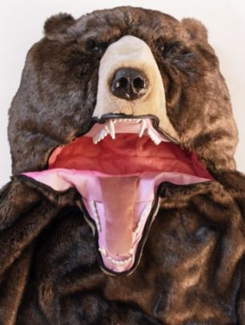You Need This Grizzly Bear Sleeping Bag (6 pics)