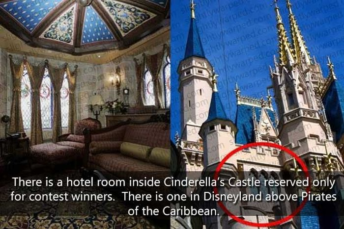 50 Things You Didn't Know About Disney Theme Parks (50 pics)