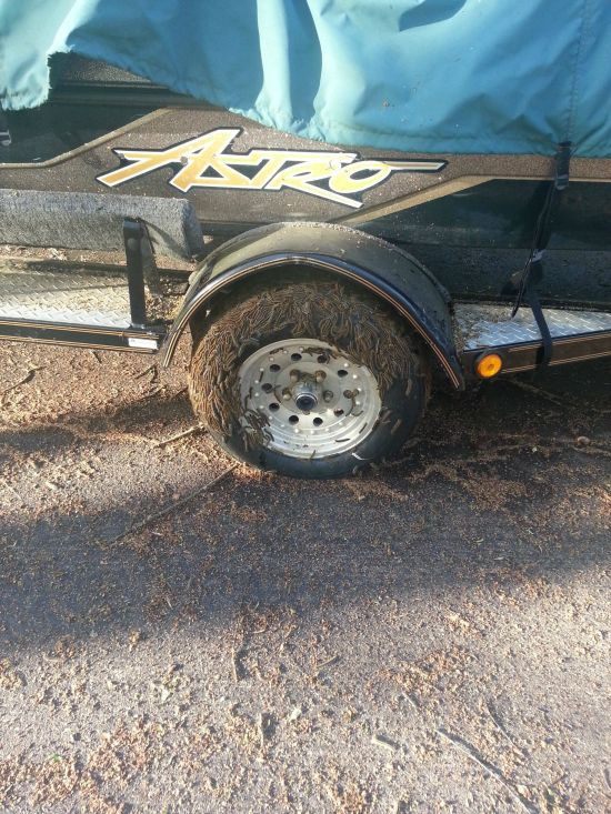 See What Creature Infested This Tire Overnight (3 pics)