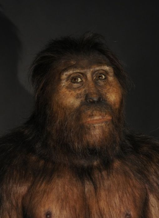 Hominid Reconstructions Are A Blast From The Past (16 pics)