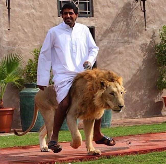 The Ridiculous Lives Of Rich People In Dubai (19 pics)