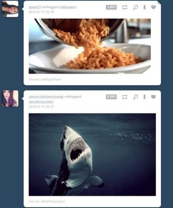 These Tumblr Posts Were Perfectly Timed (29 pics)
