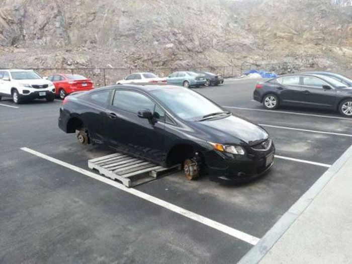 Collection of Fails. Part 40 (39 pics)