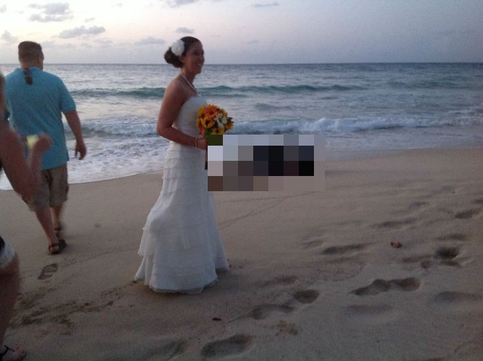 This Turtle Is A Total Wedding Crasher (5 pics)