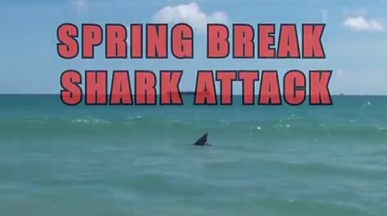 Hilarious Shark Attack Prank