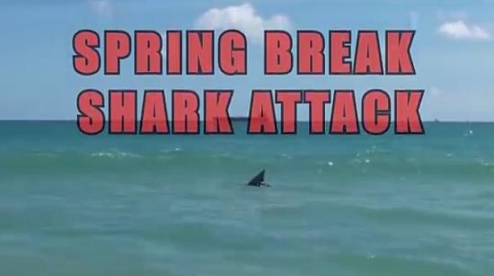 Hilarious Shark Attack Prank