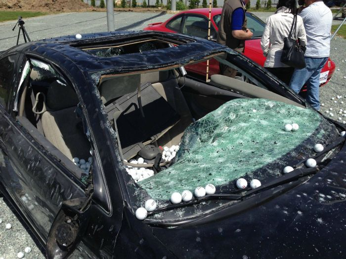 Golf Balls Fall From The Sky (5 pics)