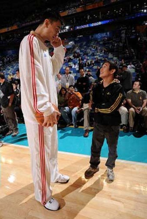 Yao Ming Makes Other People Look Like Ants 47 Pics-1176
