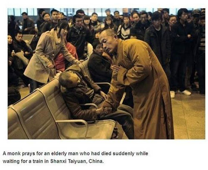 These Pictures Will Hit You Right In The Feels (40 pics)