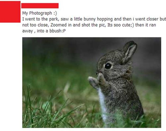 Are These Facebook Users Are Telling The Truth? (24 pics)