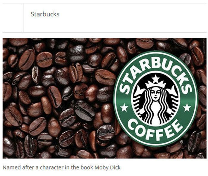 Find Out How Famous Companies Got Their Names (25 pics)