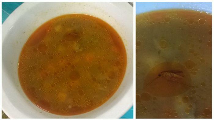 See The Gross Meals Hungarian Schools Serve (14 pics)