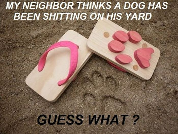 Big Problems With The Neighbors (21 pics)