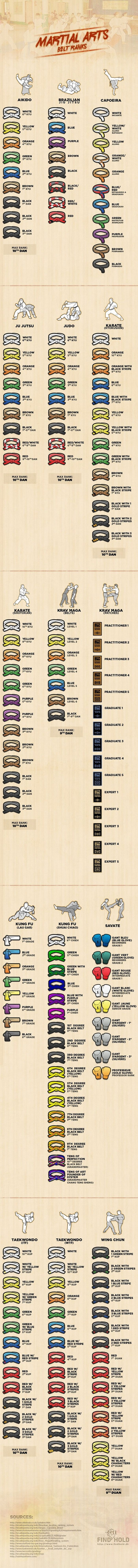 Martial Arts Belts And Colors By The Style (infographic)