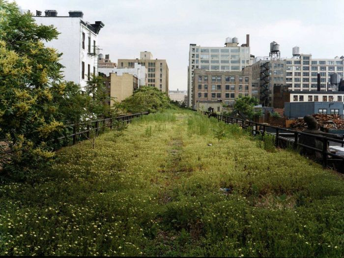 Photos Of The High Line Abandoned Railway (55 pics)