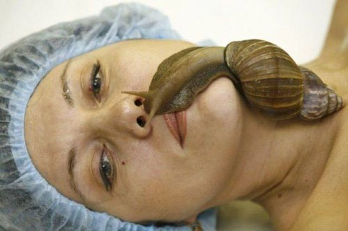 There Is So Much Nope In Here You Have No Idea (54 pics)