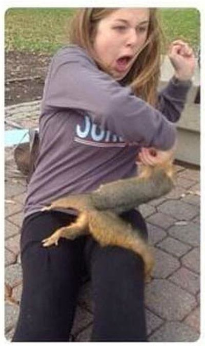 Squirrel Sinks His Teeth Into Innocent Woman (2 pics)