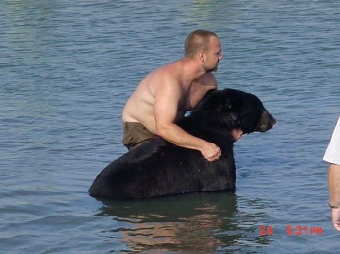 Man Saves One Of The Most Dangerous Animals (16 pics)