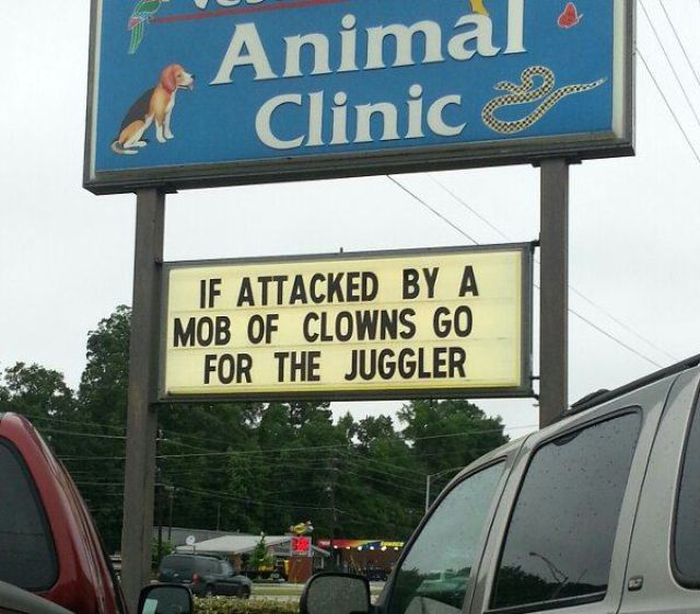 It's Hard Not To Laugh At These Puns (42 pics)