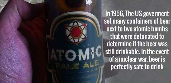 More Amusing Facts To Get Your Brain Going (32 pics)