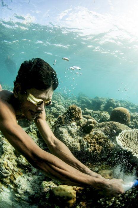 A Life On The Sea (43 pics)
