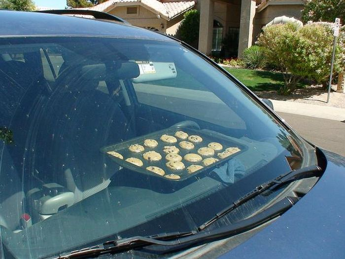 You Know It's Too Hot Outside When (26 pics)