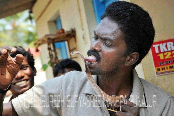 Vava Suresh Has A Very Unique Job (25 pics)