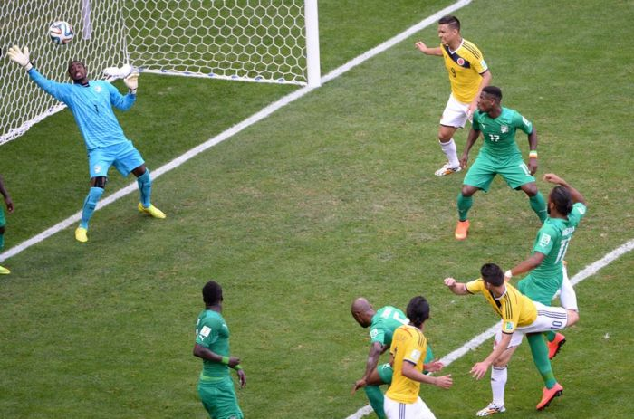 Best Goals Of The World Cup 2014 (22 pics)