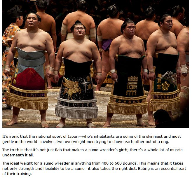 The Daily Diet Of A Sumo Wrestler (3 pics)