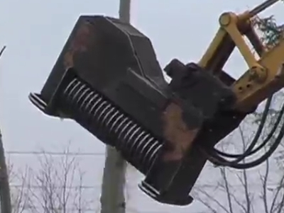 Awesome Way To Cut A Tree