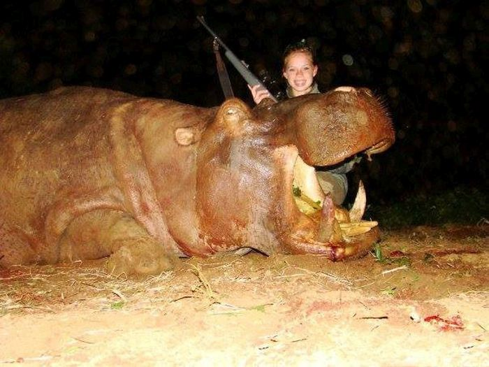 Texas Cheerleader Hunts Innocent Animals In Africa (18 pics)