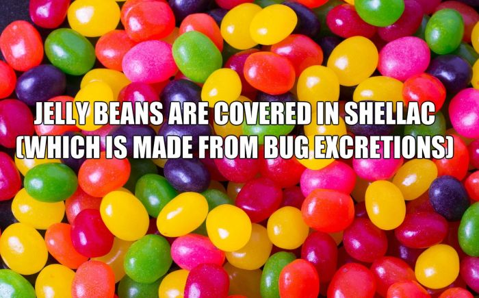 Completely Horrifying Facts That Will Change You (22 pics)