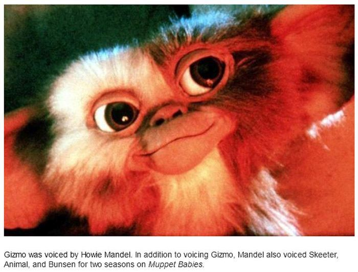 15 Facts You Didn't Know About Gremlins (15 pics)