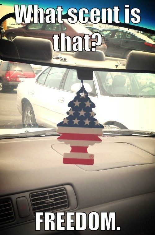 Nothing Is More American Than America (21 pics)