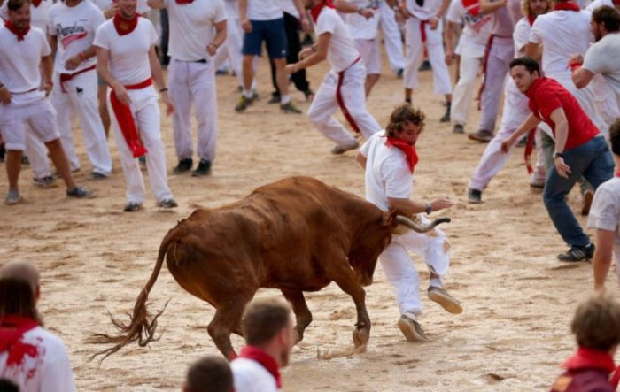 When You Run With The Bulls You Get The Horns (19 pics)
