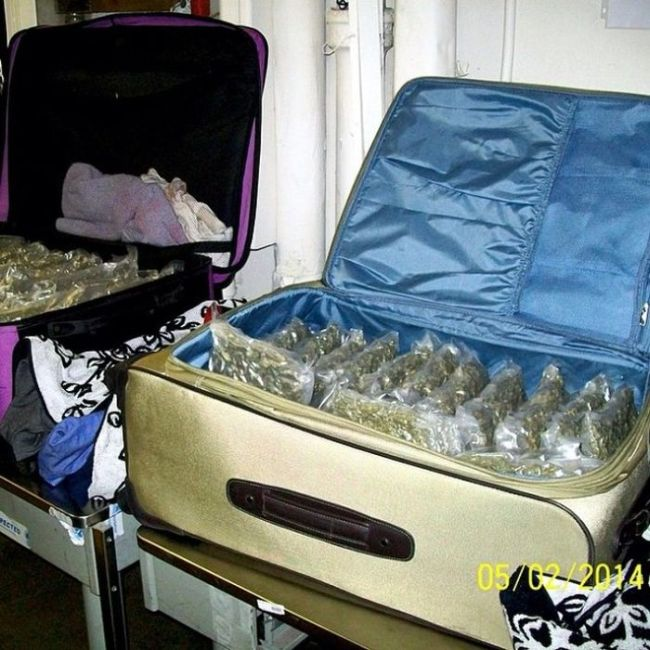 Why Would You Try To Bring This On A Plane? (25 pics)