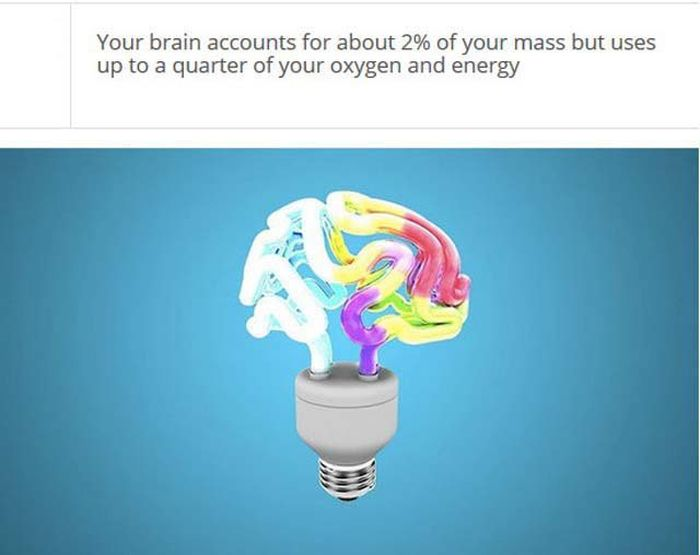 Facts About Your Brain That Might Blow Your Mind (25 pics)