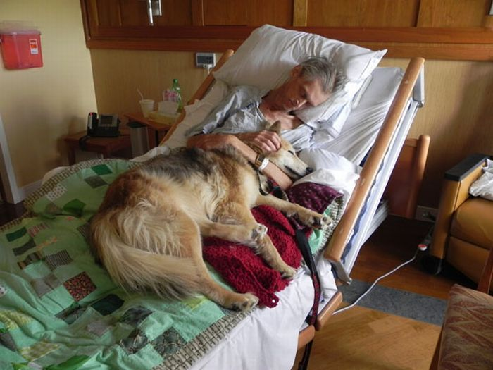 Top 5 Things People Regret On Their Deathbed (2 pics)