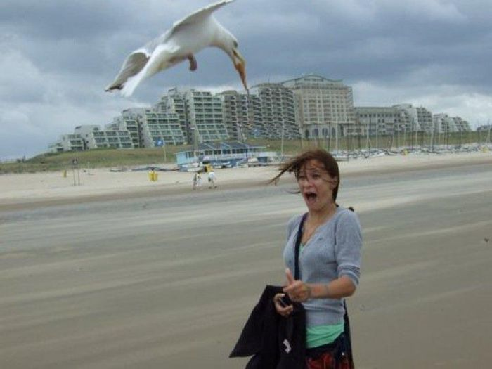 These People Are Doing The Beach Wrong (26 pics)