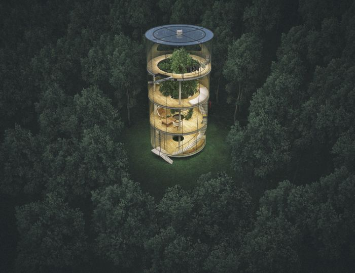 The Most Amazing Glass Treehouse On The Planet (6 pics)