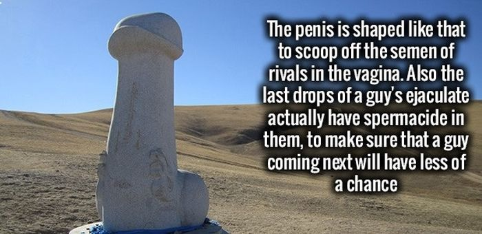 Fire Up Your Brain With These Fun Facts (34 pics)