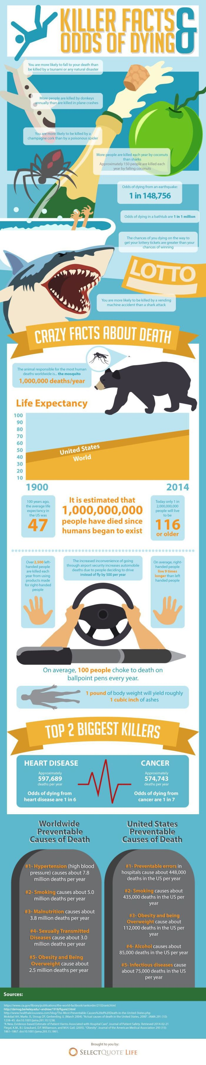 Insane Facts About Death And Dying (infographic)