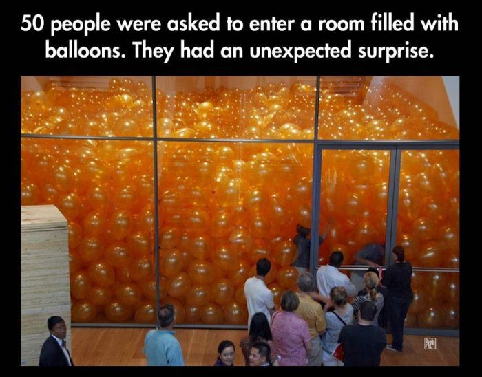 When 50 People Enter A Room Filled With Balloons (2 pics)