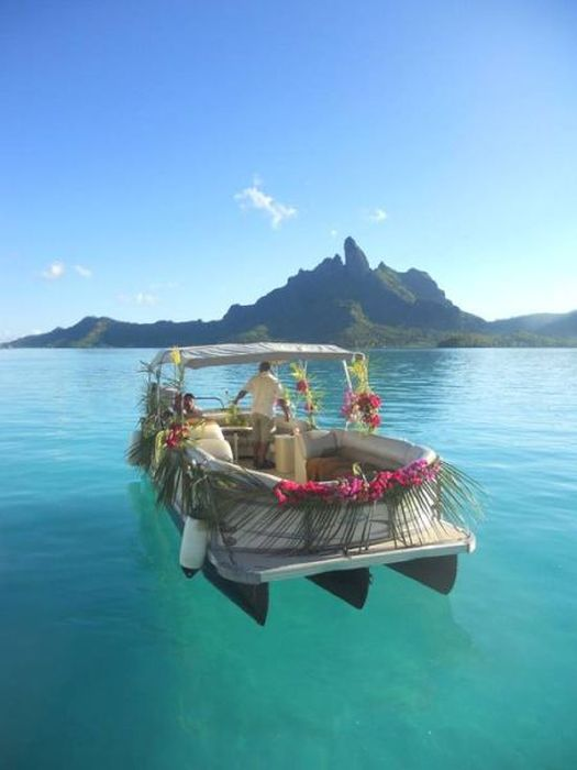 Island Life Is The Life To Live (59 pics)