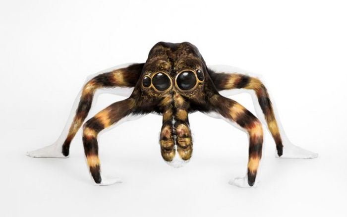 Model Transforms Into A Tarantula (6 pics)