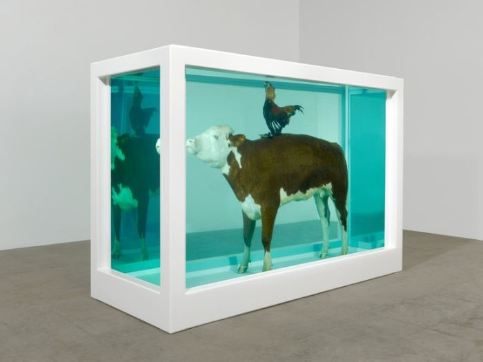 Damien Hirst Turns Taxidermy Into Art (44 pics)