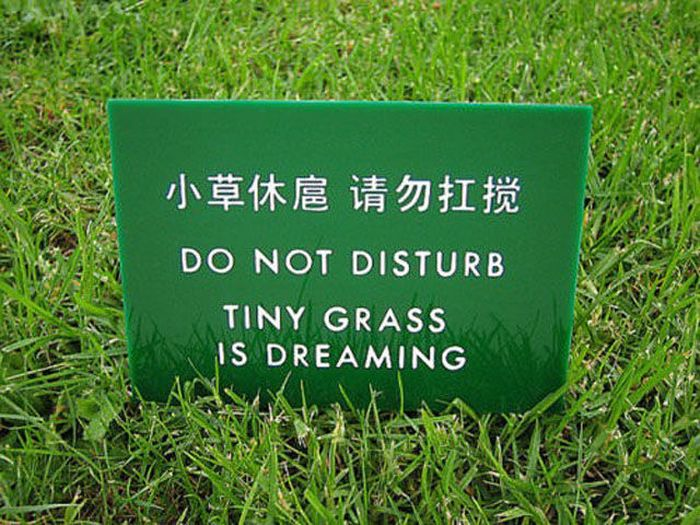Translations Gone Wrong Feels Oh So Right (34 pics)
