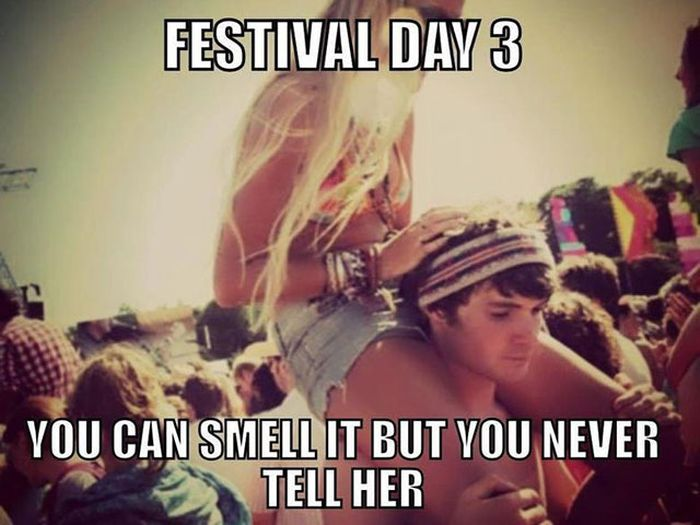 The Music Festival Experience In A Nutshell (30 pics)