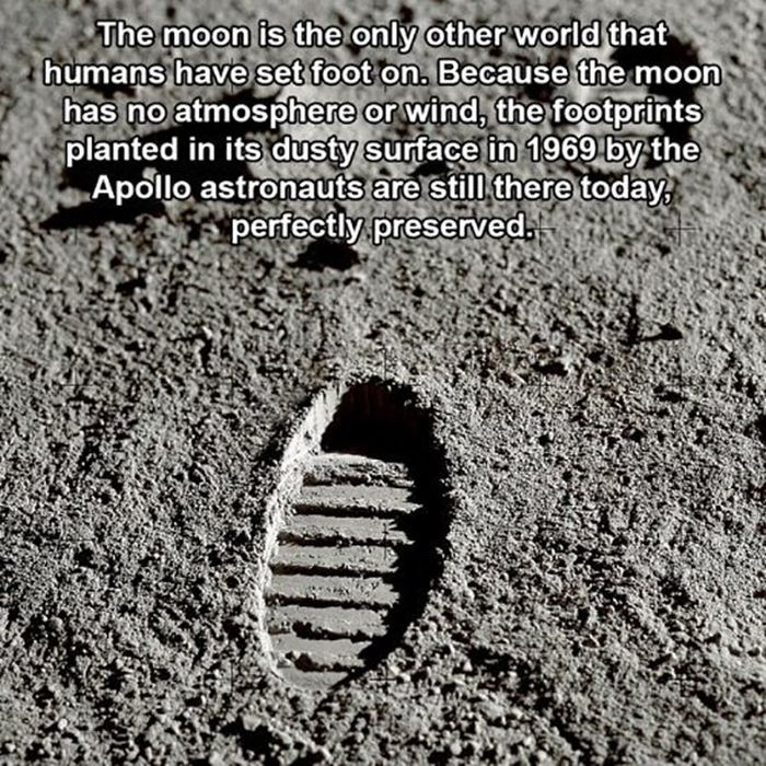 Fun Facts You Didn't Know About Space (16 pics)